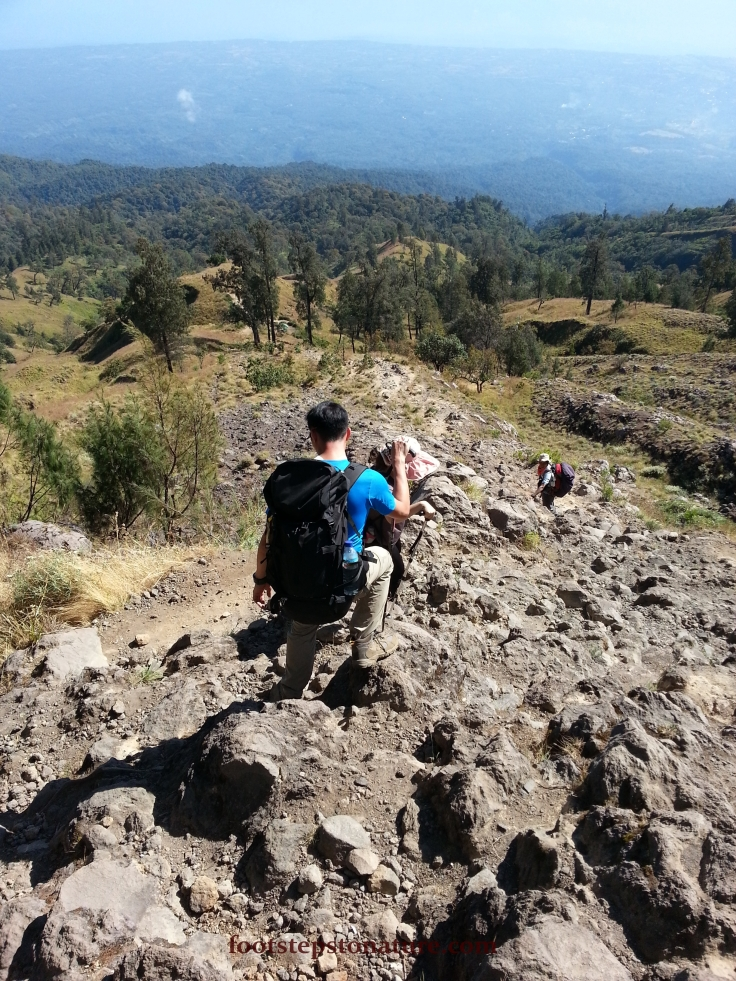 9.45am – We began our descend on rocky surface before entering the forest, this was actually the Senaru path to Mt. Rinjani