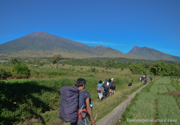 Day 1, 9.00am – The journey begins with a picturesque view of paddy fields against the prominent Mt Rinjani